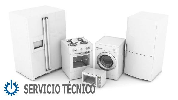 Servicio t cnico liebherr en murcia reparaciones for Servicio tecnico murcia